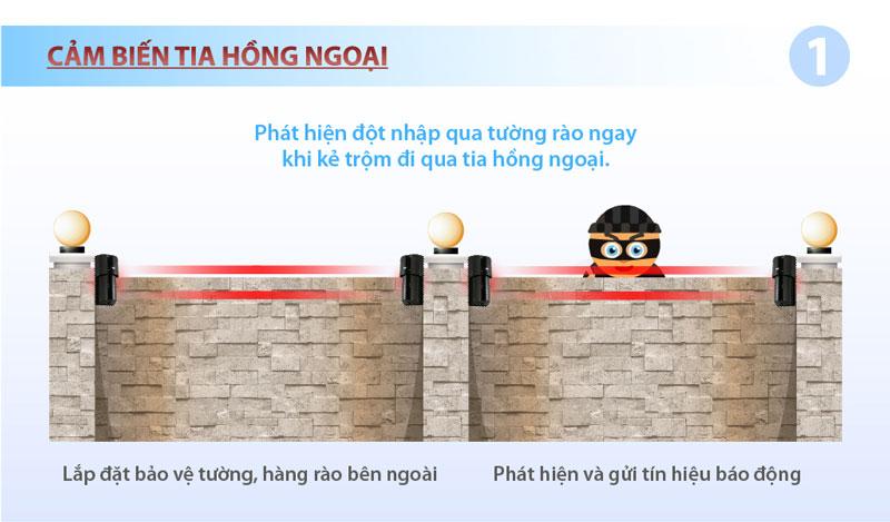 hang-rao-hong-ngoai-bao-trom
